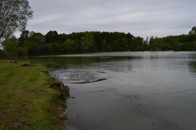 Etang la Suassaie het meer 07