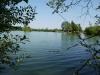 Etang la Suassaie het meer 06
