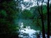 Birches Lake meer 03