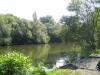 Birches Lake meer 05
