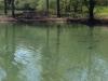 etang de berniere het meer 04