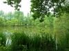 Orchard Lake meer  06