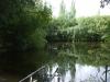 Poplars Lake meer  01