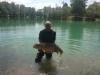 roedeer lake vis 14
