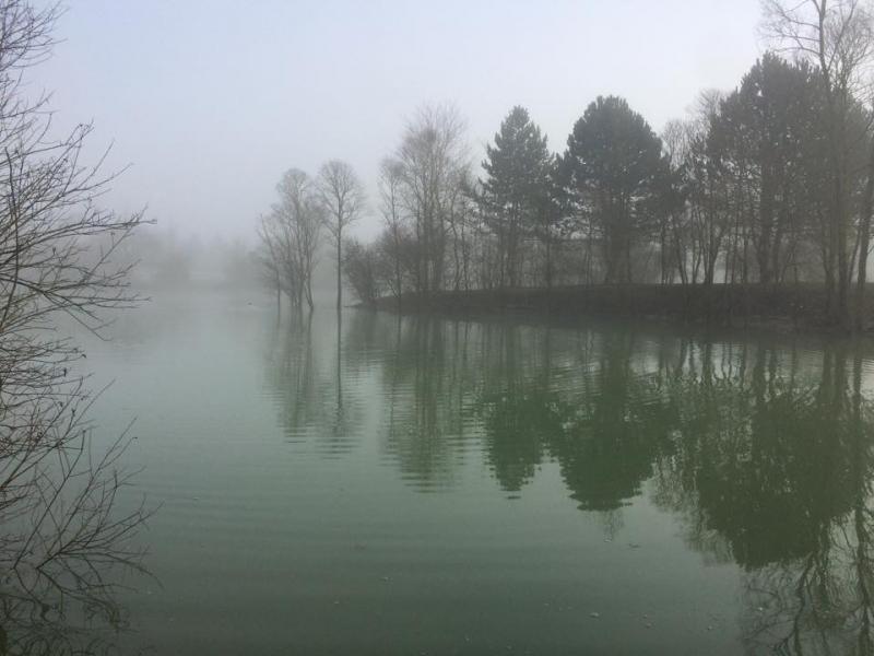 roedeer lake meer 08