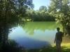 roedeer lake meer 05