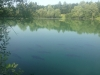 roedeer lake meer 16
