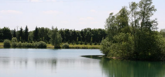 lac darcy geknipte foto_resize