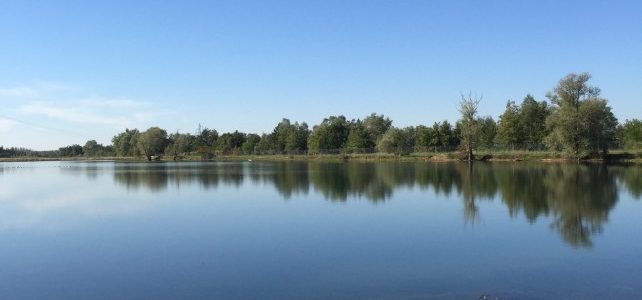 Nieuwe bestemming: Bay Lake 1