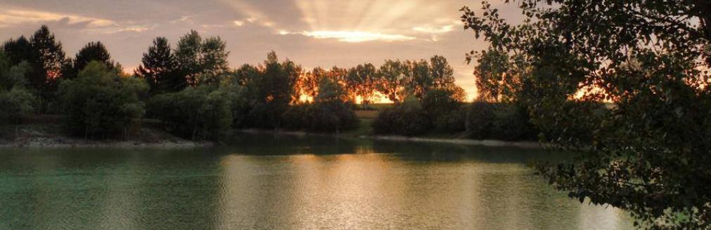 roedeer-lake-kopfoto